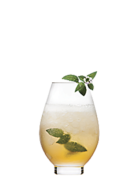 Photo du cocktail Champagne julep
