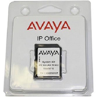 Avaya ipo rem tech supt 8x5