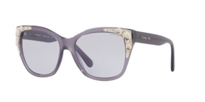 Coach Purple 0HC8244