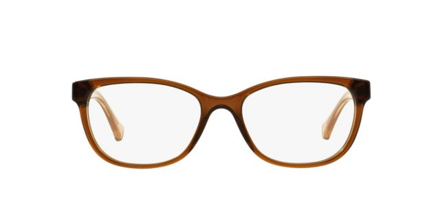 40e06cea38 Coach Brown HC6072 Womens Eyeglasses