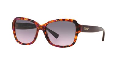 Coach Purple HC8160 Sunglasses