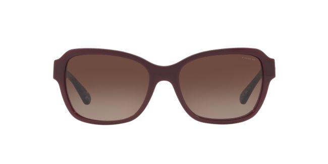 c2bd04f403fc Coach Red Brown Gradient HC8232 56 L1010 Sunglasses | Target Optical