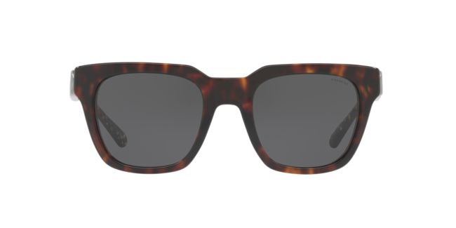 af44b70ceabe Coach Tortoise HC8240 52 L1028 Sunglasses | Target Optical