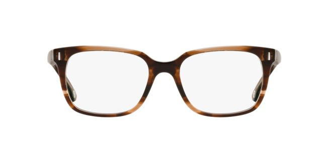 A New Day Multi Brown A32059 Eyeglasses | TargetOptical.com