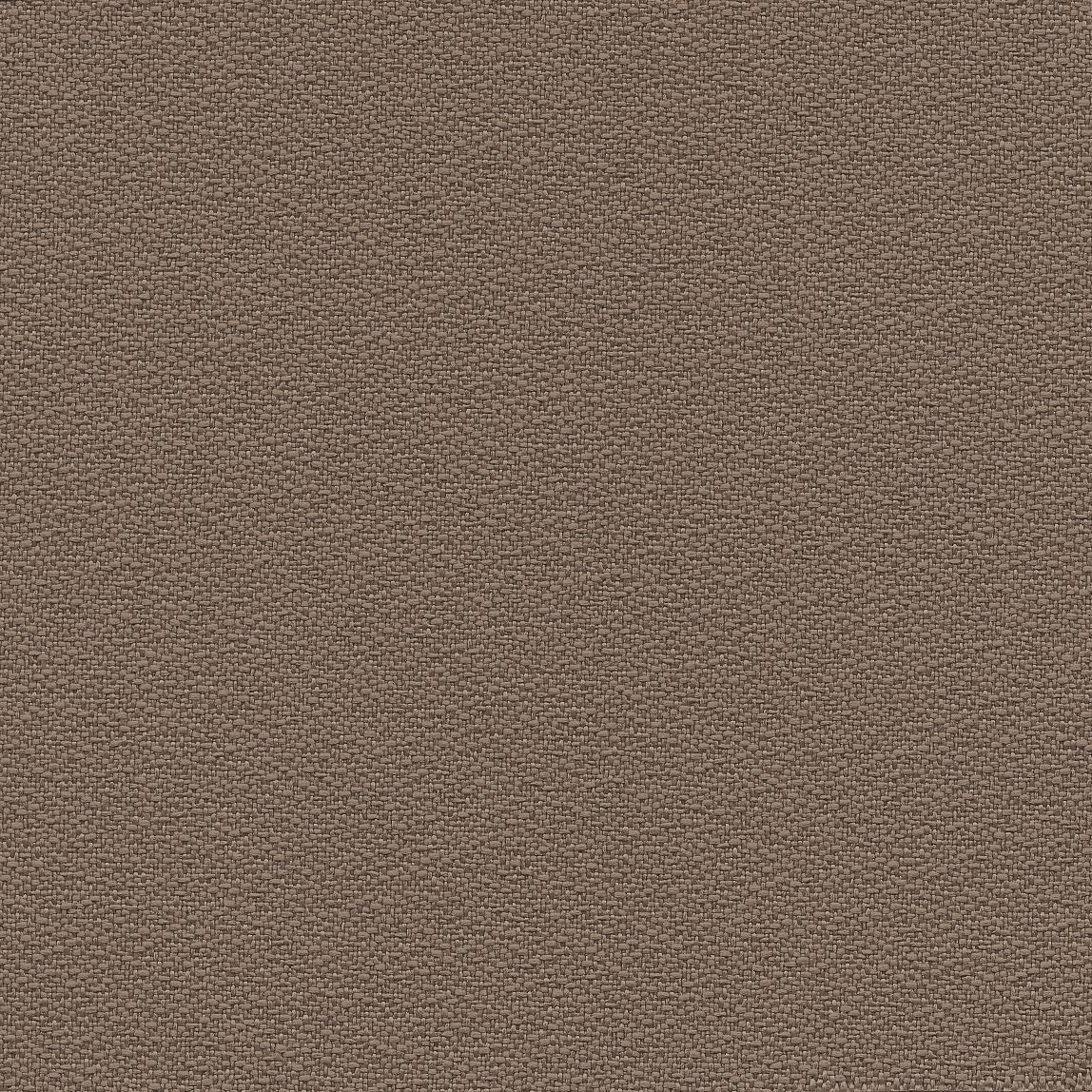 Centurion Panel Bark Swatch