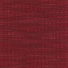 Compass Ruby Swatch