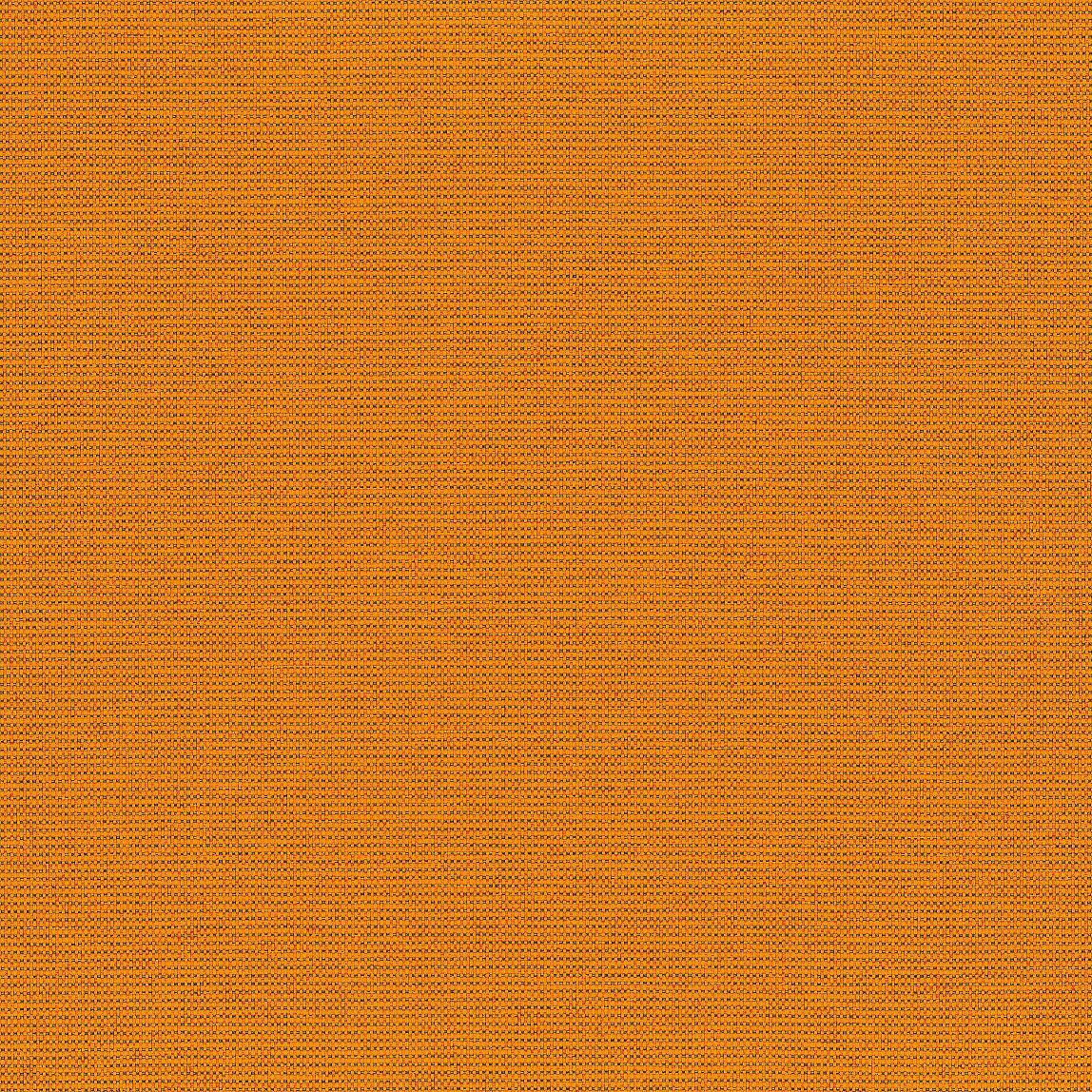 Dapper Marigold Swatch