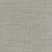 Taupe Taupe Swatch