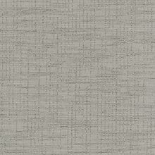 Disperse Taupe Swatch