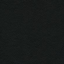 EB Vinyl Black Swatch