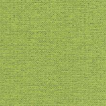 Hamilton Lime Swatch