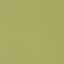 Inertia Lime Swatch