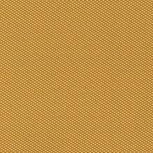 Inertia Mustard Swatch