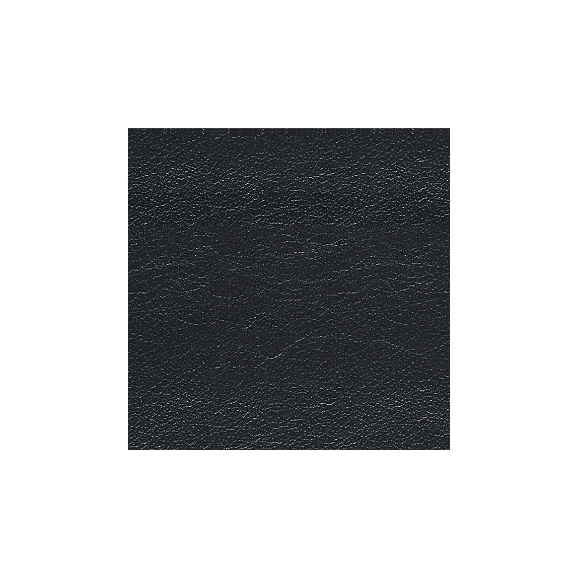 Leather Black Swatch