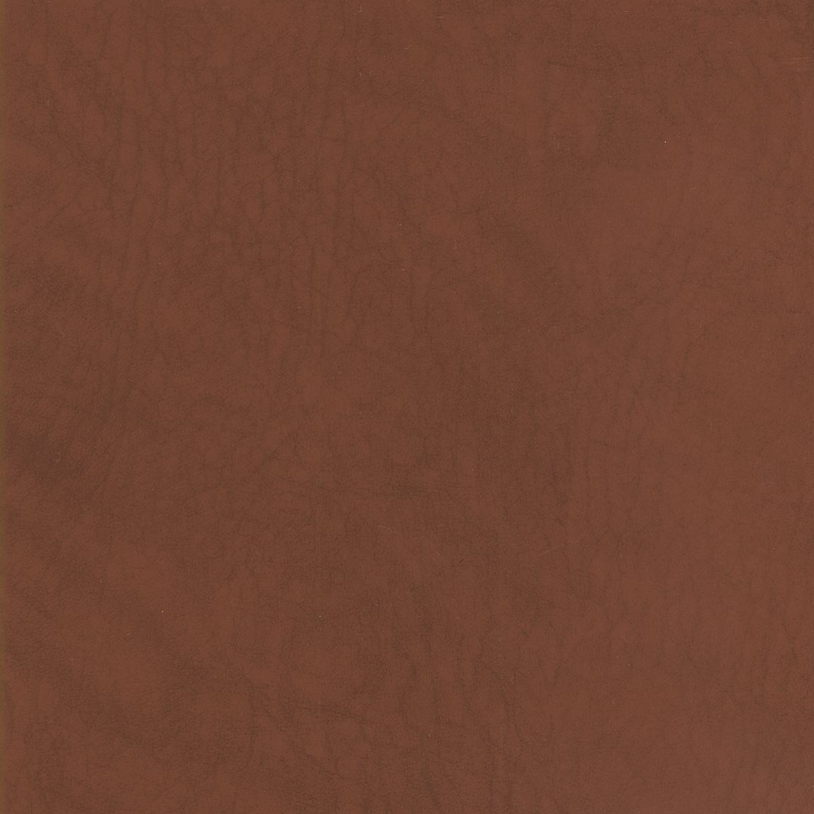 Whisper Vinyl Cinnamon Swatch