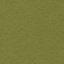 Wooly Lawn Swatch