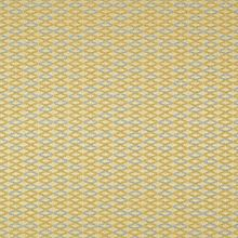 Oblique Maize Swatch