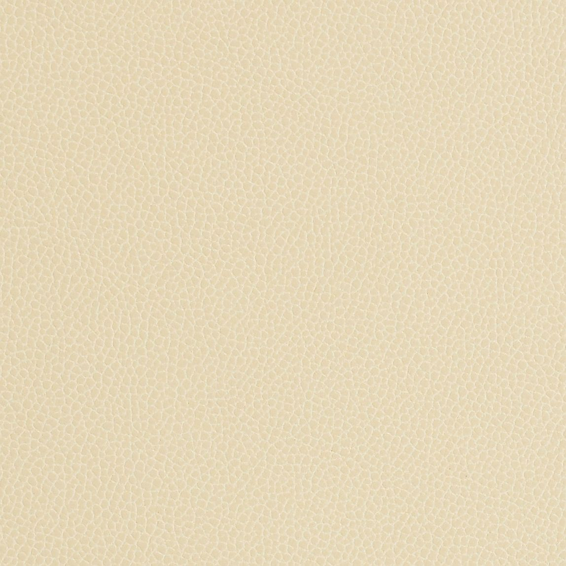 Silica Leather Almond Swatch