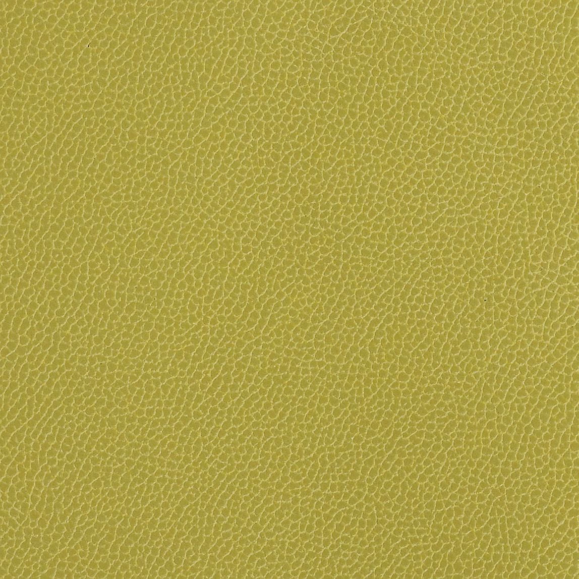 Silica Leather Aloe Swatch