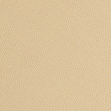Silica Leather Barley Swatch
