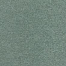 Silica Leather Chambray Swatch