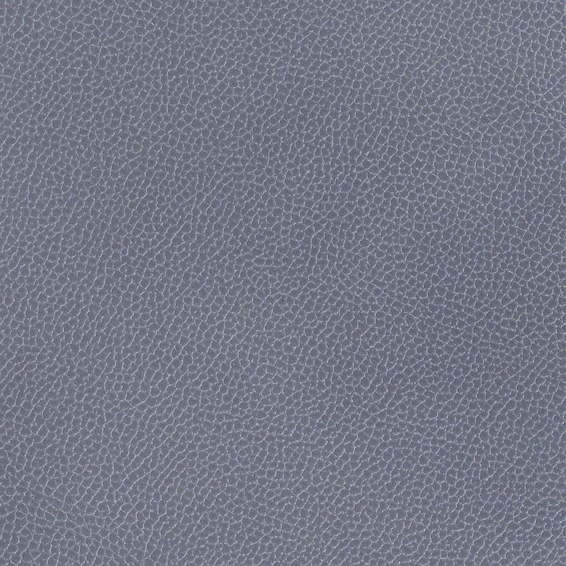 Silica Leather Denim Swatch