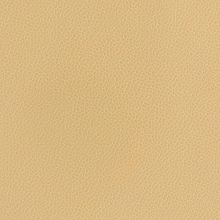 Silica Leather Dune Swatch