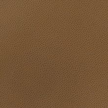 Silica Leather Earthen Swatch
