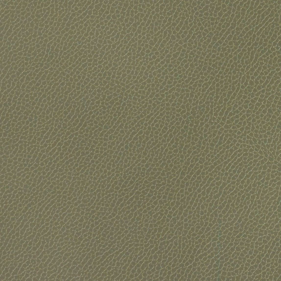 Silica Leather Eucalyptus Swatch