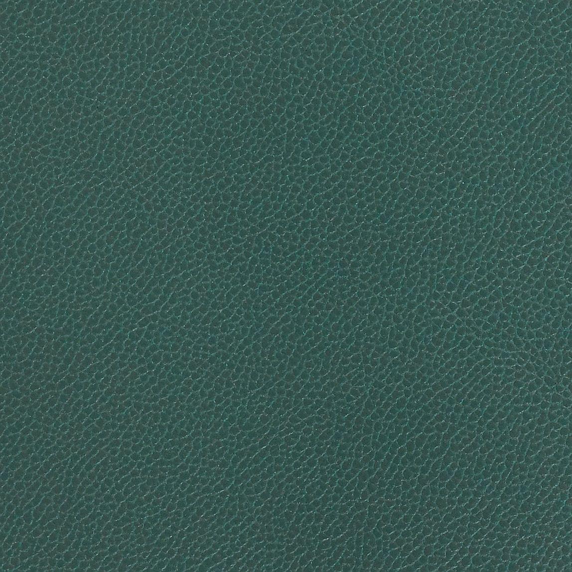 Silica Leather Juniper Swatch
