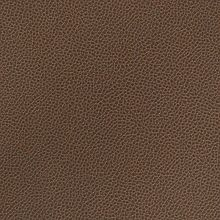 Silica Leather Mink Swatch