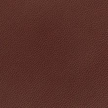 Silica Leather Raisin Swatch