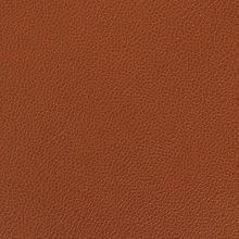 Silica Leather Rustic Swatch