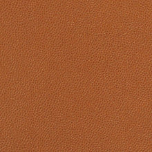 Saddle Saddle Swatch
