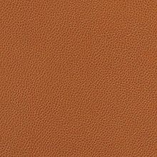 Silica Leather Saddle Swatch