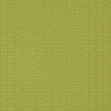 Olive Olive Swatch