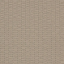 Sycamore Sycamore Swatch