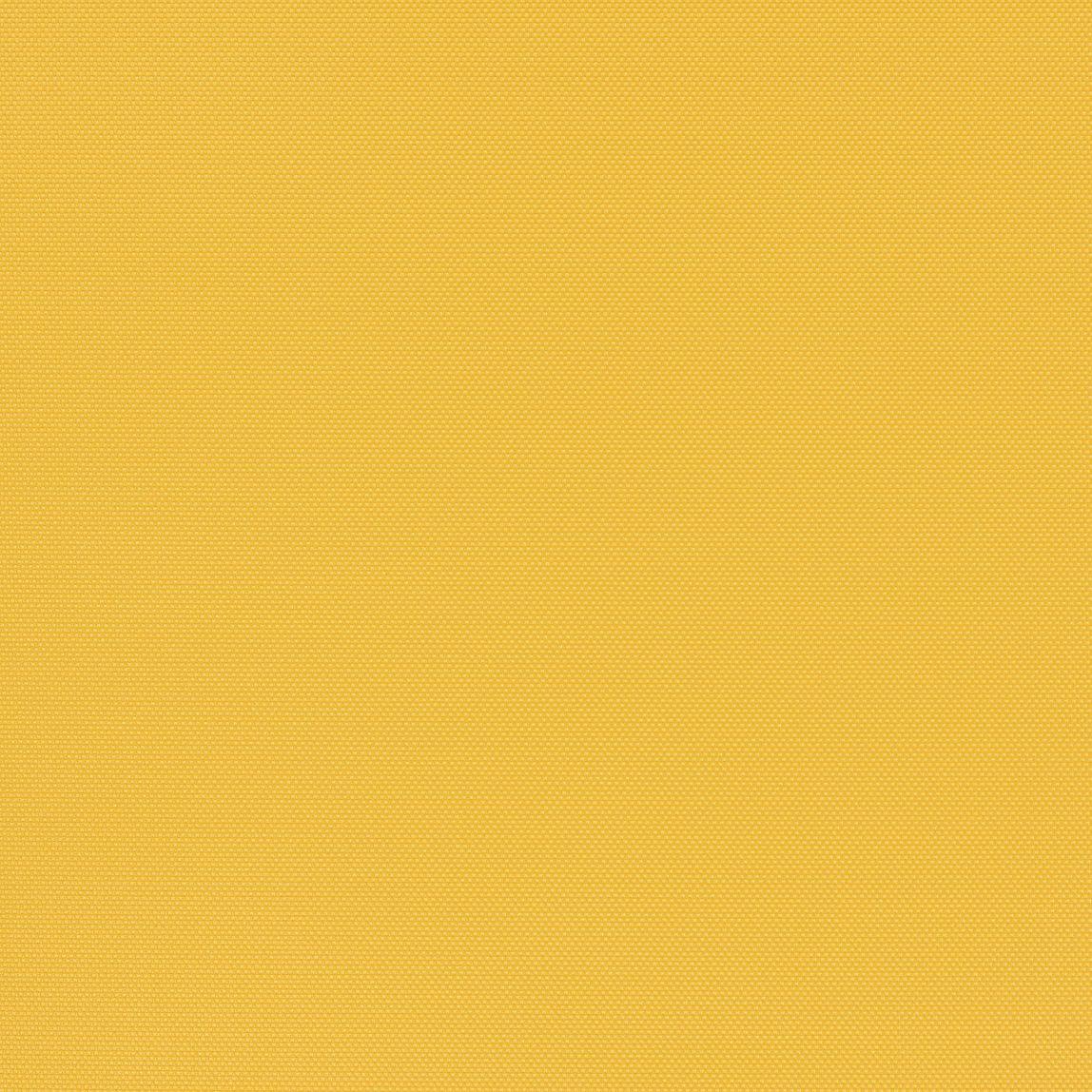 Amplify Marigold Swatch