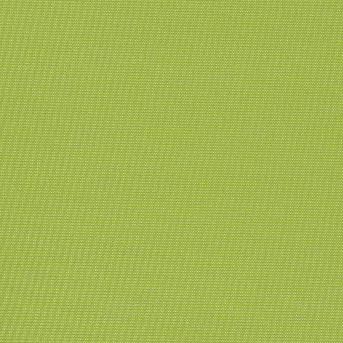 Amplify Parakeet Swatch