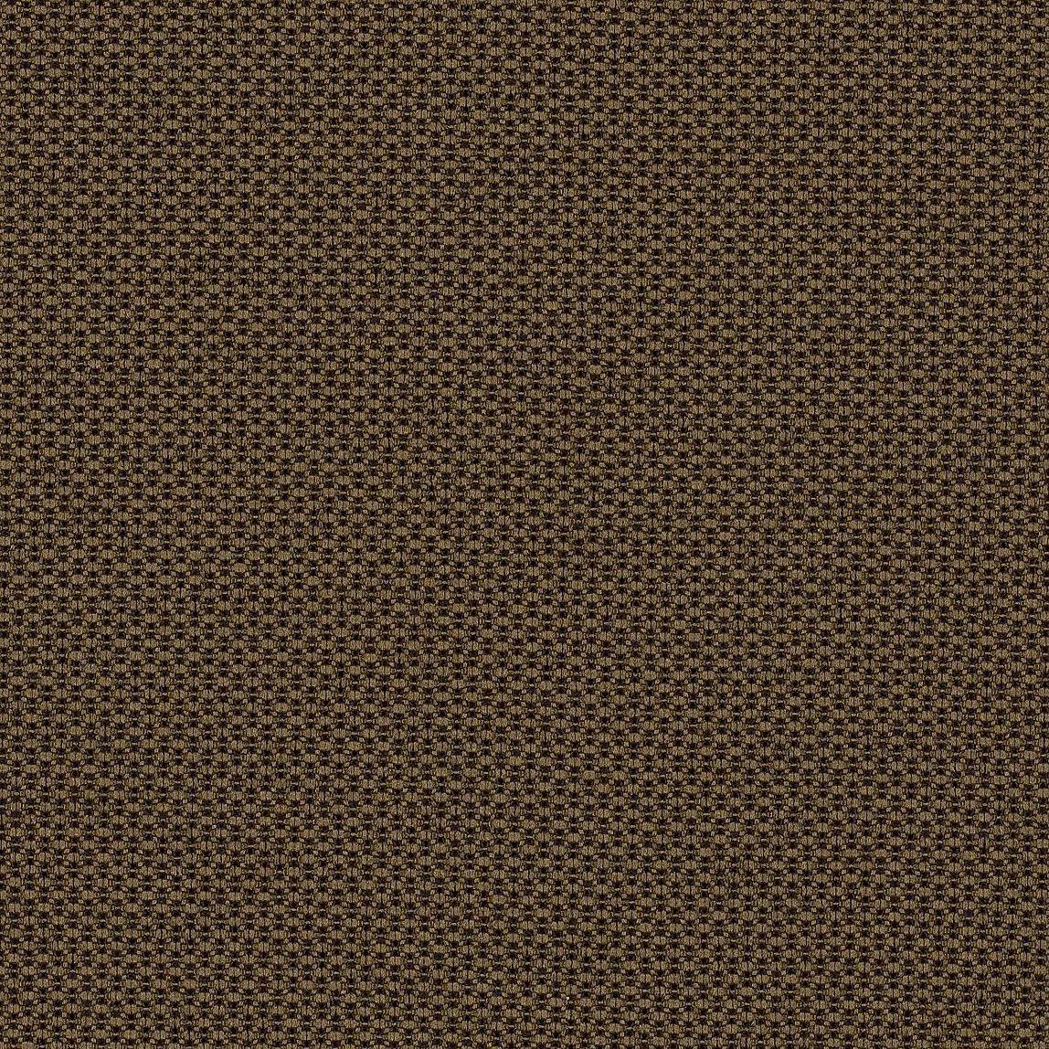 Bryant Park  Chocolate Swatch