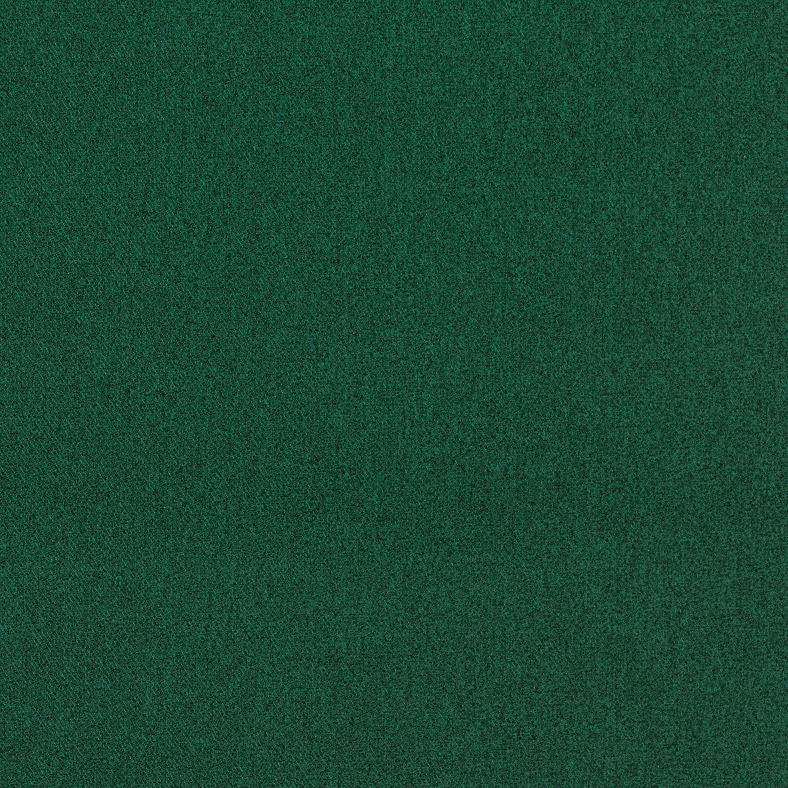 Outlander Emerald Swatch