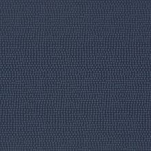 Polka Blue Moon Swatch
