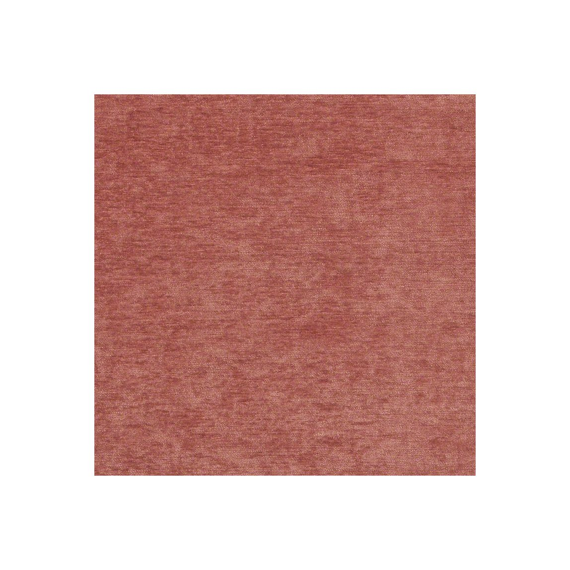 Ritz Begonia Swatch