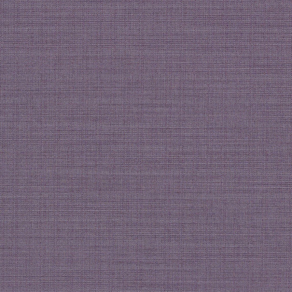 Squire Grape Swatch