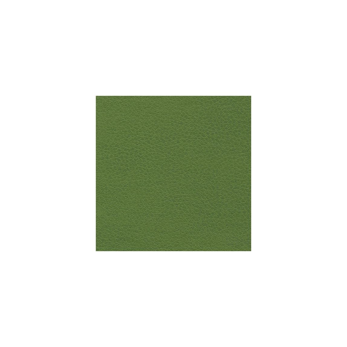 Brisa Apple Green Swatch
