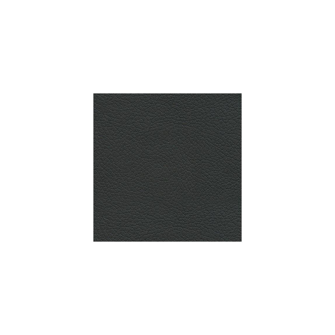Brisa Black Onyx Swatch
