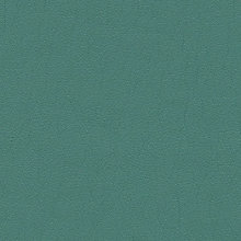 Persian Green Persian Green Swatch