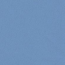 Ultraleather Pro Sky Swatch