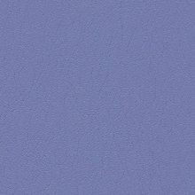 Violet Violet Swatch