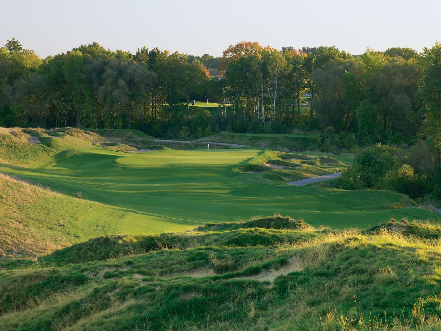 A view of the green of the hole 15 on the Irish Course.
